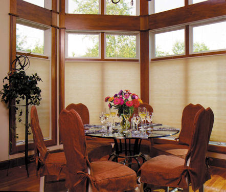 patrician cell shades woodlands cellular shades single